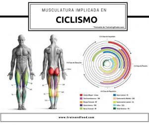 musculatura ciclismo